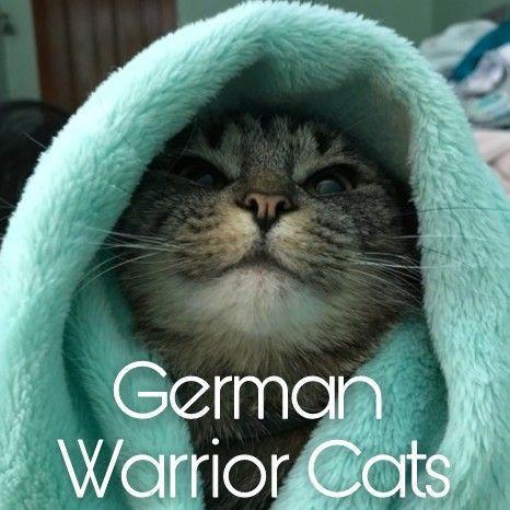 Zeichnen Nach Euren Wünschen German Warrior Cats Amino