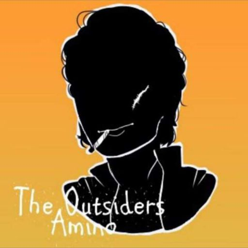 The Outsiders Preferences | Wiki | The Outsiders Amino Amino
