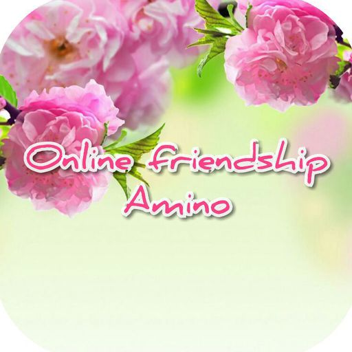 What is more important? | Online Friendship Amino