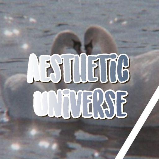 Music Artists   Wiki   Aesthetic Universe Amino